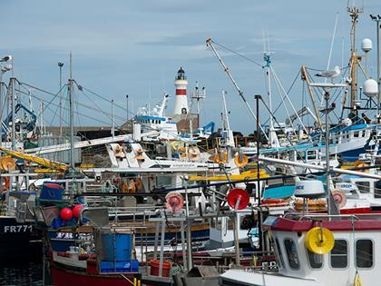 fishing boats harbour