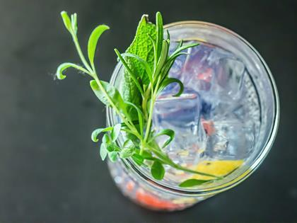 gin and tonic credit wine dharma via flickr one use