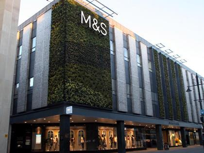 M&S living wall