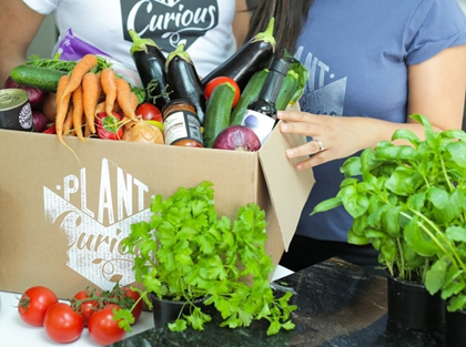 Plantcurious launches 100 vegan organic recipe boxes forumfinder Image collections