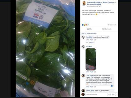 Morrisons spinach