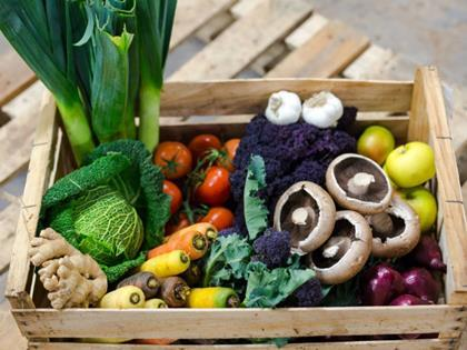 Organic food sales hit all time high of £2.2bn