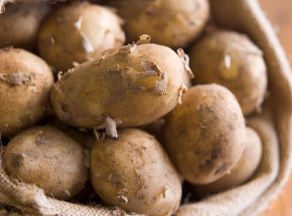 how to grow jersey royals