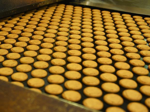 ginger nut biscuits being made factory