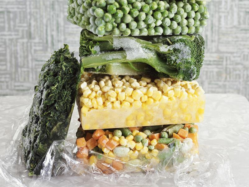 proposal on frozen food Frozen foods is the second largest export sector of the economy the massive natural resources available in bangladesh make this sector particularly promising for investors looking to supply in international as well as in domestic markets.