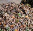 food waste mountain