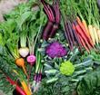 Bakkavor fruit and veg