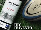 trivento rugby