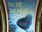 me not meat fish campaign