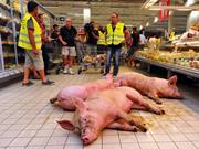 pig in supermarket protest one use