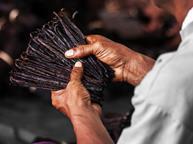 Madagascan vanilla bunch - single use
