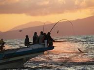 sustainable tuna fish