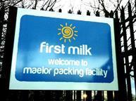 first milk maelor