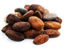 Cocoa ONE USE