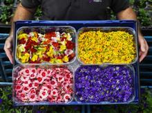 Edible flowers Sainsbury's