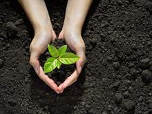 Biodiversity sustainability environment