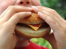 Burger obesity