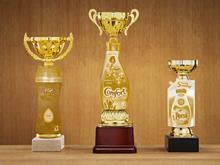 household item trophies one use