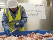 campylobacter testing chicken