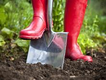 focus on farm shop, lead picture, digging the soil with red wellies