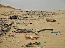 Plastic pollution environment