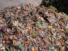 food waste mountain