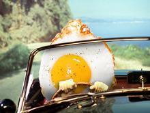 egg one use