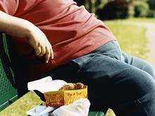 obesity fat bench unhealthy