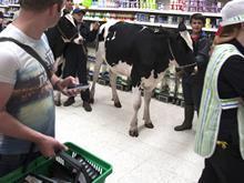 milk analysis one use