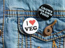 Focus On Meat Free