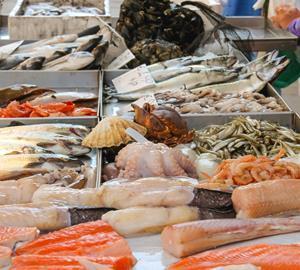 fish seafood fishmonger