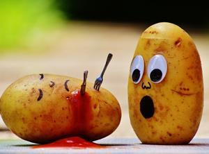 Potatoes being stabbed_food safety incident_one use only