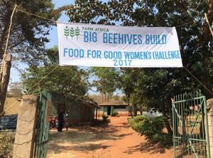 Farm Africa Beehive web