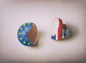 Brexit egg webinar image