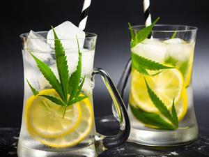 cannabis cbd soft drink