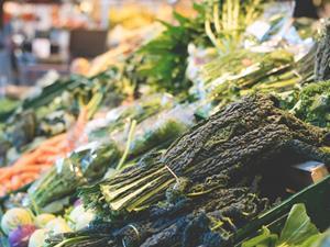 Organic veg display