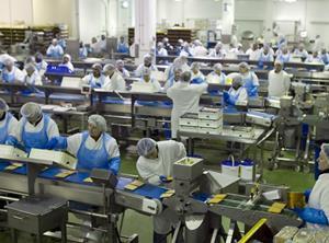 Greencore factory