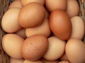 eggs one use