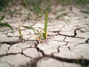 dry earth drought climate change