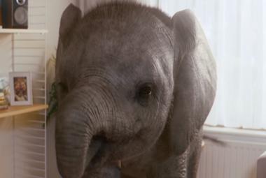 KP elephant