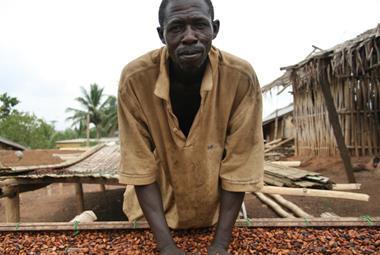 fairtrade cocoa