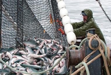Fishermen fishing for fish