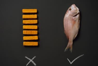 Focus on fish
