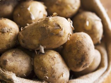 potatoes one use