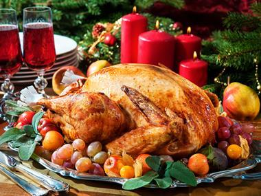 turkey one use