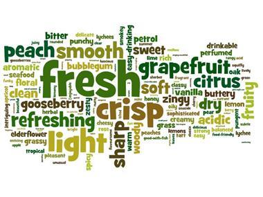 Tesco white wine word cloud