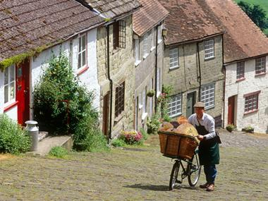 Focus on Bread Hovis image