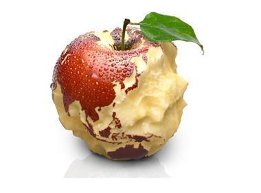 global food waste one use