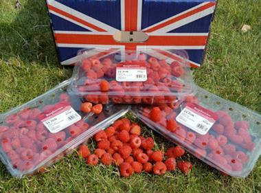 Tesco raspberries