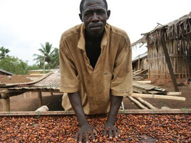 Co-op pledges Fairtrade cocoa in all own label